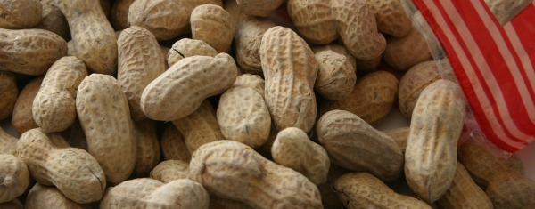 Peanut allergy affects about 1 in 2,000 people
