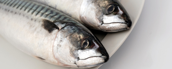 Omega-3s – it's a fishy business